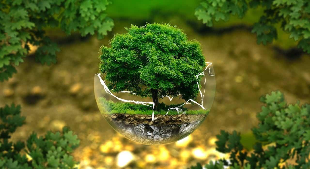 1001 gestes pour protéger la planète et maîtriser ses dépenses d'énergie